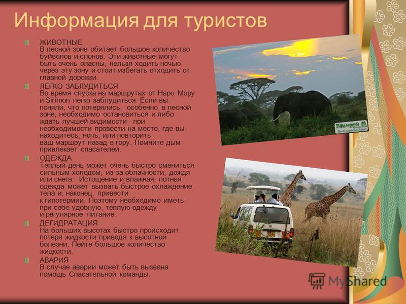 Информация для туристов ЖИВОТНЫЕ В лесной зоне обитает большое количество буйволов и слонов. Эти животные могут быть очень опасны, нельзя ходить ночью через эту зону и стоит избегать отходить от главной дорожки. ЛЕГКО ЗАБЛУДИТЬСЯ Во время спуска на м