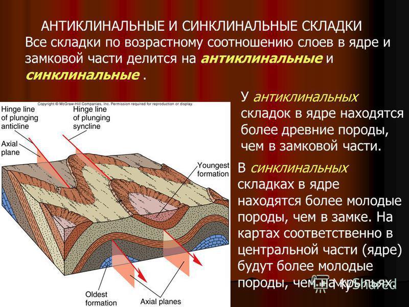 АНТИКЛИНАЛЬНЫЕ И СИНКЛИНАЛЬНЫЕ СКЛАДКИ Все складки по возрастному соотношению слоев в ядре и замковой части делится на антиклинальные и синклинальные. У антиклинальных складок в ядре находятся более древние породы, чем в замковой части. В синклинальн