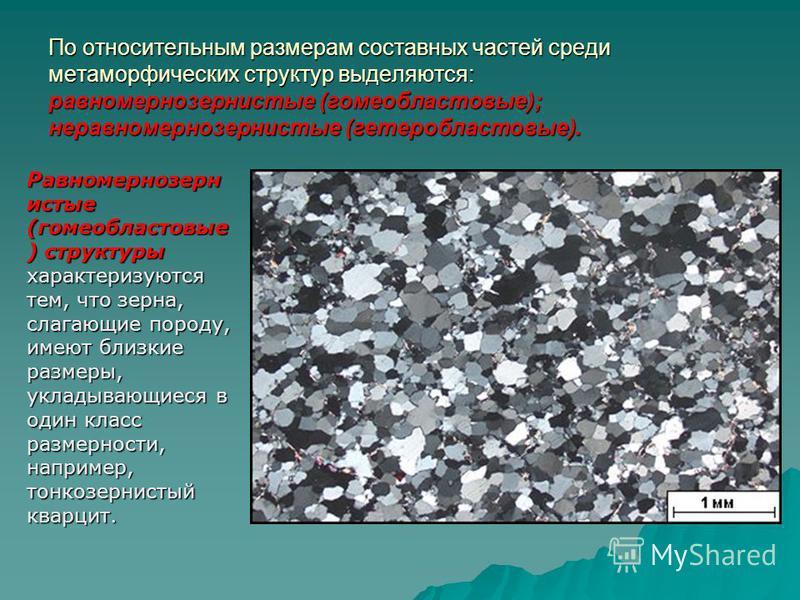 По относительным размерам составных частей среди метаморфических структур выделяются: равномернозернистые (гомеобластовые); неравномернозернистые (гетеробластовые). Равномернозерн истые (гомеобластовые ) структуры характеризуются тем, что зерна, слаг