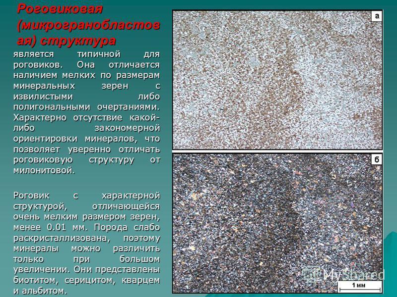 Роговиковая (микрогранобластов ая) структура является типичной для роговиков. Она отличается наличием мелких по размерам минеральных зерен с извилистыми либо полигональными очертаниями. Характерно отсутствие какой- либо закономерной ориентировки мине