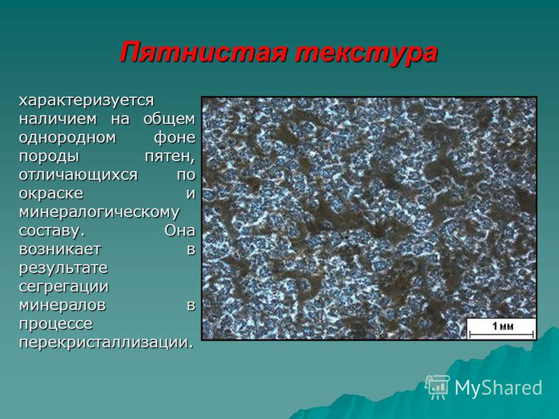 Пятнистая текстура характеризуется наличием на общем однородном фоне породы пятен, отличающихся по окраске и минералогическому составу. Она возникает в результате сегрегации минералов в процессе перекристаллизации.
