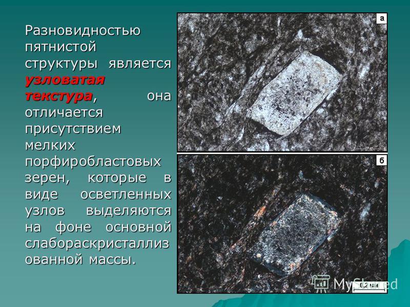 Разновидностью пятнистой структуры является узловатая текстура, она отличается присутствием мелких порфиробластовых зерен, которые в виде осветленных узлов выделяются на фоне основной слабораскристаллиз ованной массы.
