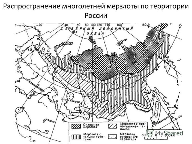 Распространение многолетней мерзлоты по территории России