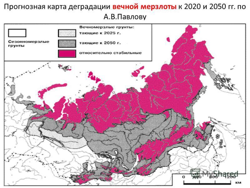 Прогнозная карта деградации вечной мерзлоты к 2020 и 2050 гг. по А.В.Павлову