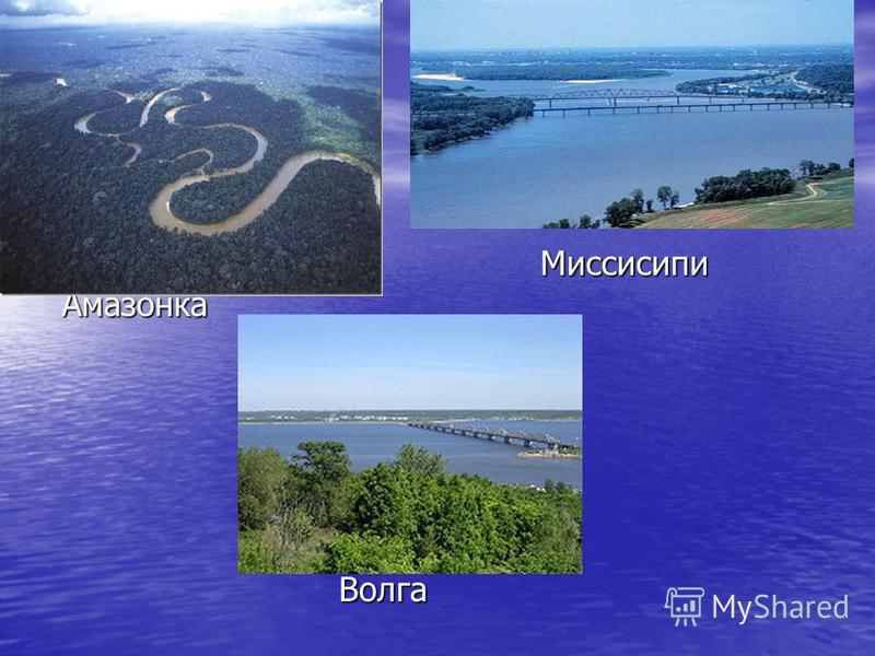 Миссисипи Миссисипи Амазонка Амазонка Волга Волга