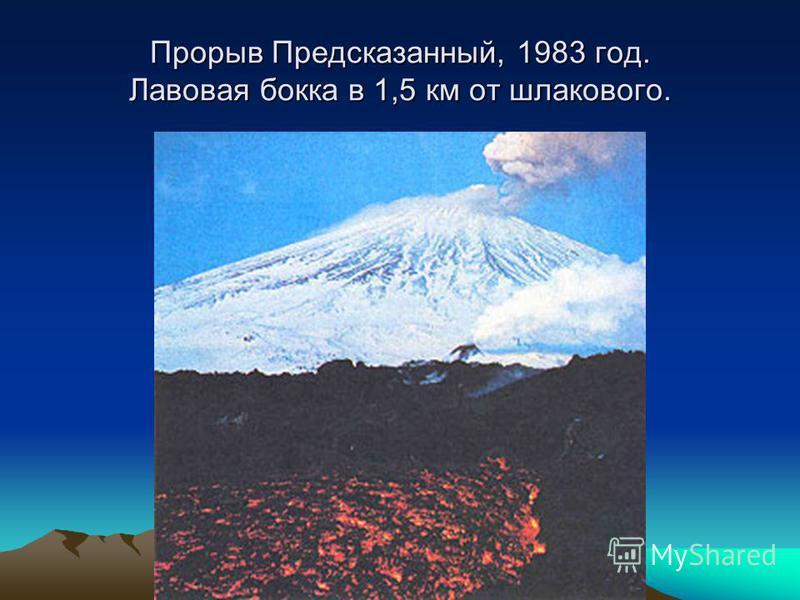 Прорыв Предсказанный, 1983 год. Лавовая бока в 1,5 км от шлакового.