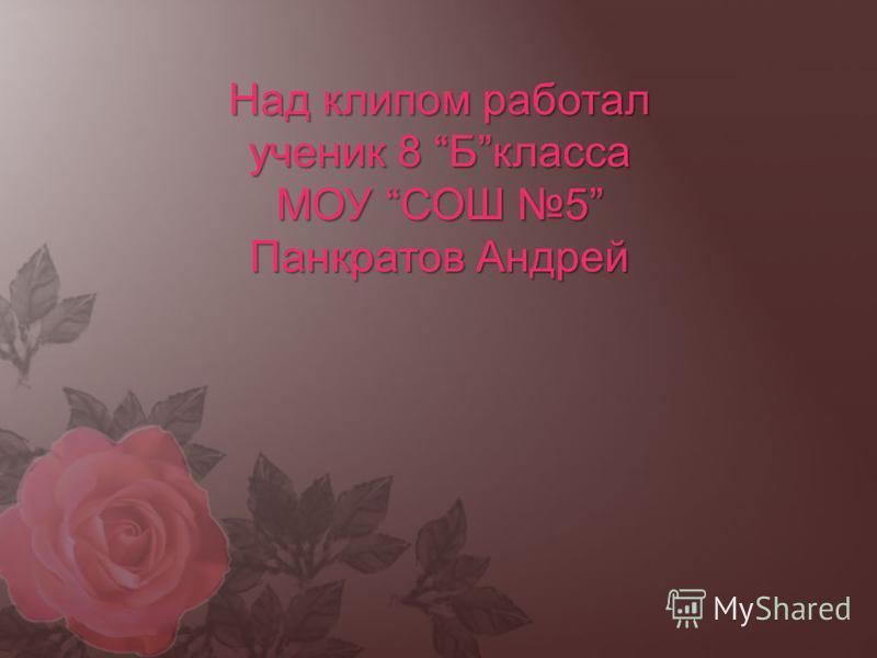 Над клипом работал ученик 8 Бкласса МОУ СОШ 5 Панкратов Андрей