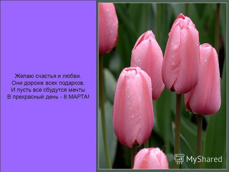 Желаю счастья и любви. Они дороже всех подарков. И пусть все сбудутся мечты В прекрасный день - 8 МАРТА!
