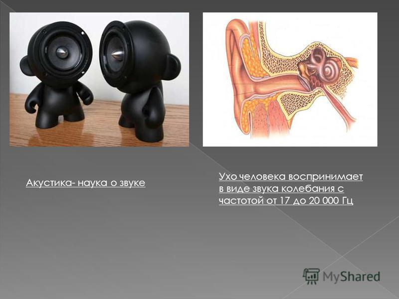 Ухо человека воспринимает в виде звука колебания с частотой от 17 до 20 000 Гц Акустика- наука о звуке