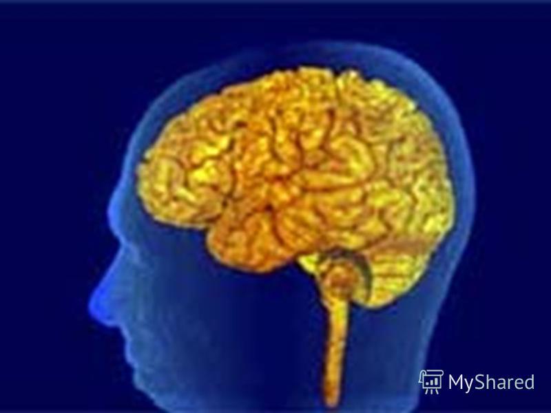 На что способен наш мозг... Иллюзии зрения