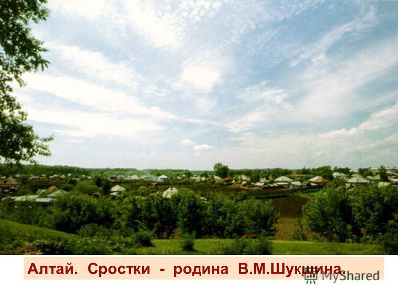 Алтай. Сростки - родина В.М.Шукшина.