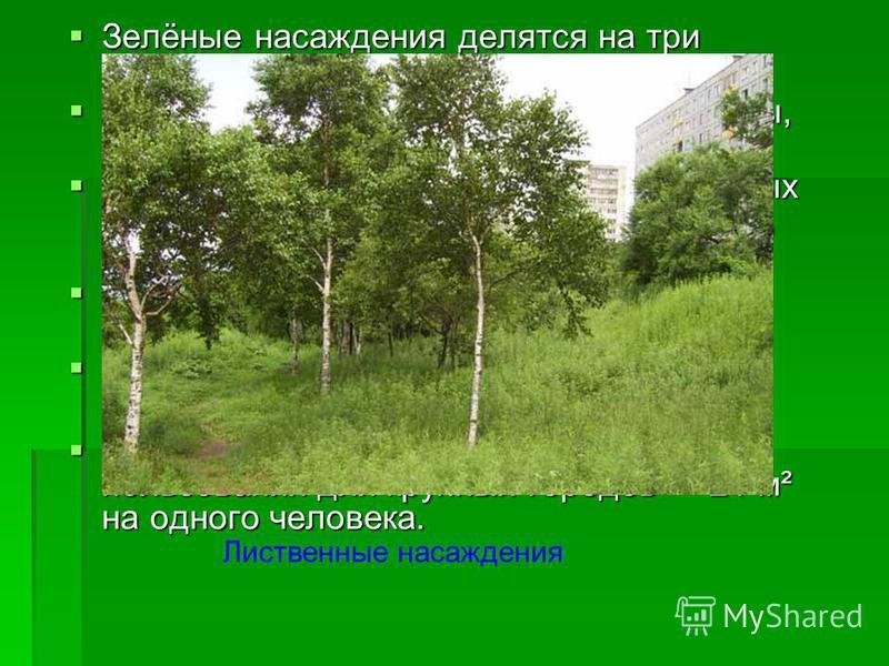 Зелёные насаждения делятся на три основные категории: Зелёные насаждения делятся на три основные категории: общего пользования (сады, парки, скверы, бульвары); общего пользования (сады, парки, скверы, бульвары); ограниченного пользования (внутри жилы