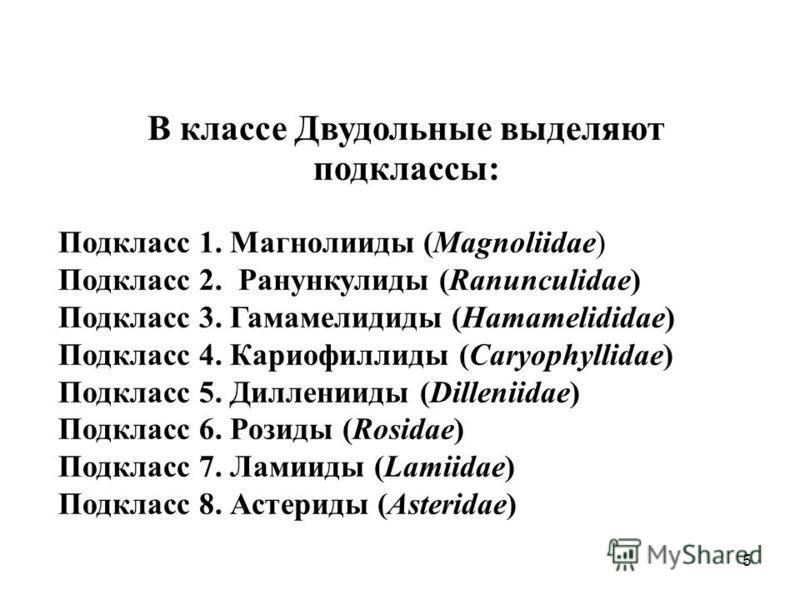 В классе Двудольные выделяют подклассы: Подкласс 1. Магнолииды (Magnoliidae) Подкласс 2. Ранункулиды (Ranunculidae) Подкласс 3. Гамамелидиды (Hamamelididae) Подкласс 4. Кариофиллиды (Caryophyllidae) Подкласс 5. Дилленииды (Dilleniidae) Подкласс 6. Ро