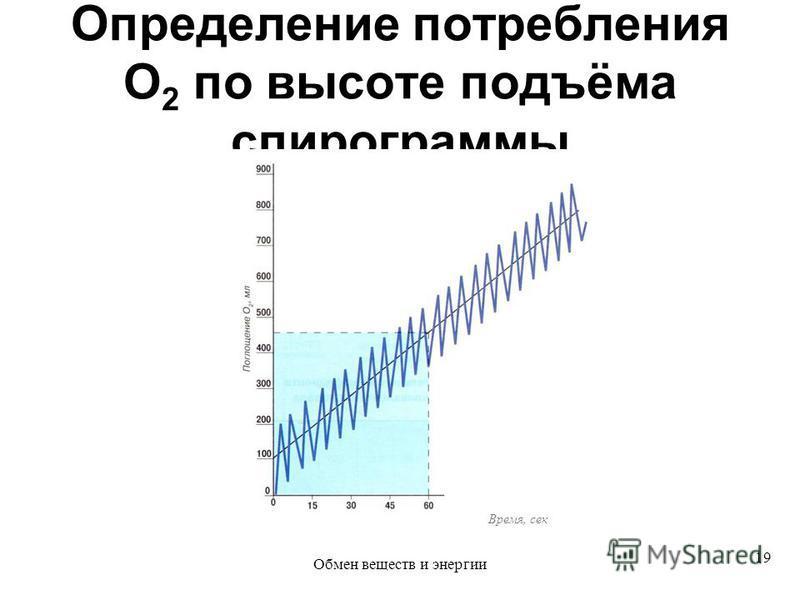 Определение потребления O 2 по высоте подъёма спирограммы Время, сек 19 Обмен веществ и энергии