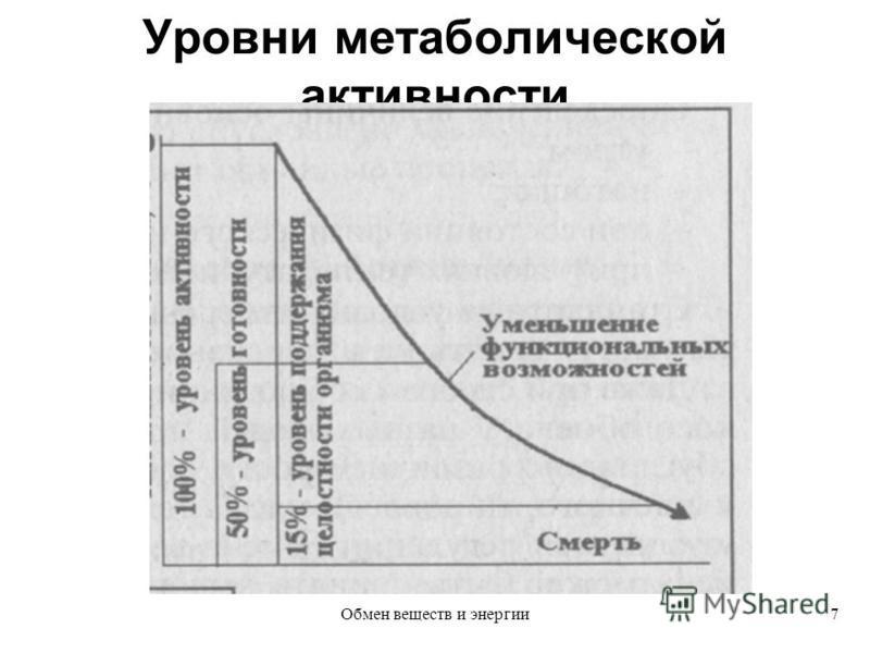 Уровни метаболической активности 7Обмен веществ и энергии