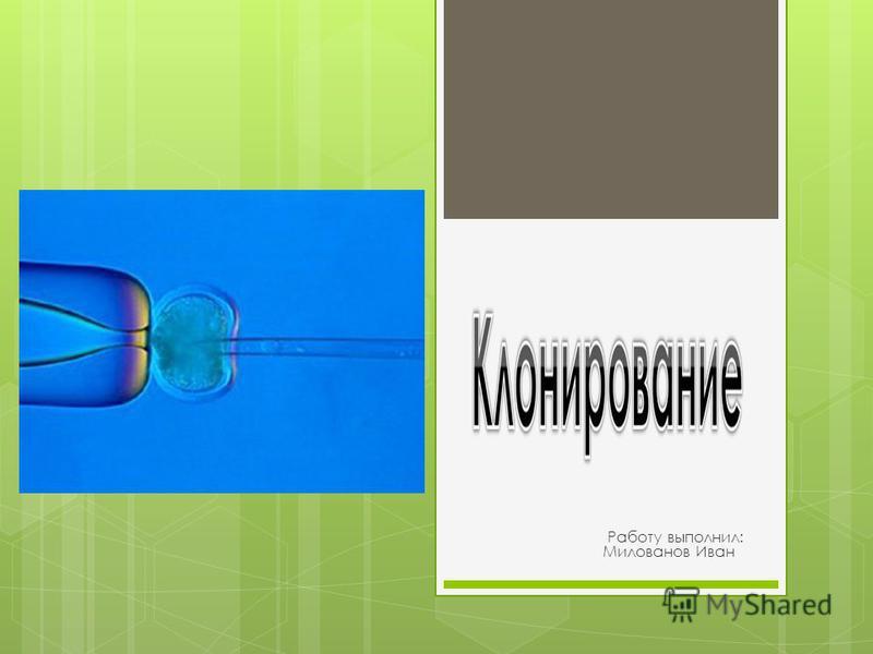 Работу выполнил: Милованов Иван