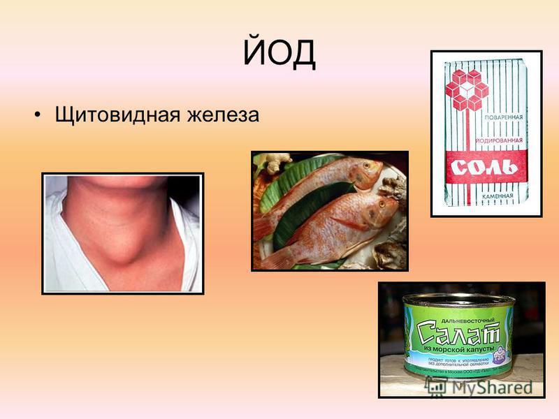 ЙОД Щитовидная железа