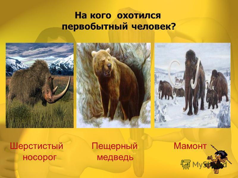 Шерстистый Пещерный Мамонт носорог медведь На кого охотился первобытный человек?