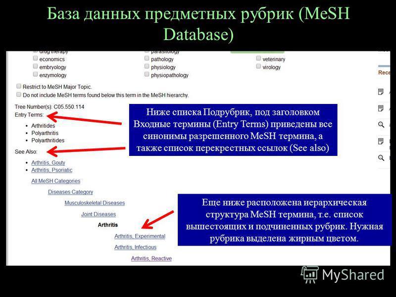 База данных предметных рубрик (MeSH Database) Ниже списка Подрубрик, под заголовком Входные термины (Entry Terms) приведены все синонимы разрешенного MeSH термина, а также список перекрестных ссылок (See also) Еще ниже расположена иерархическая струк