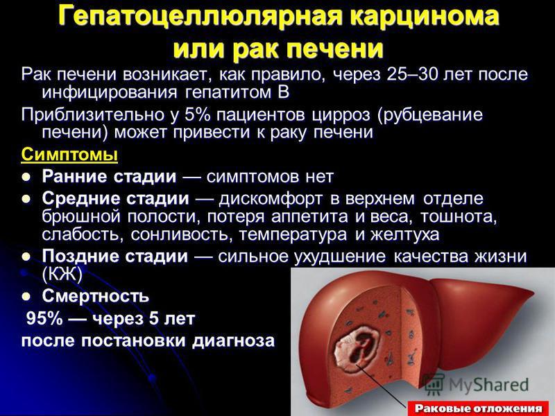 Анализ крови на гепатит б и цены