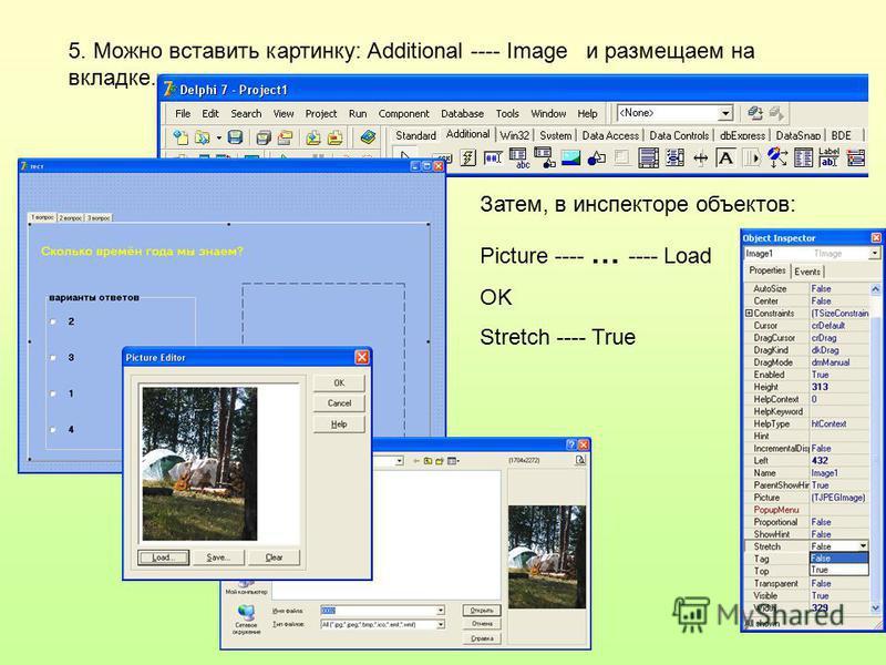 5. Можно вставить картинку: Additional ---- Image и размещаем на вкладке. Затем, в инспекторе объектов: Picture ---- … ---- Load OK Stretch ---- True