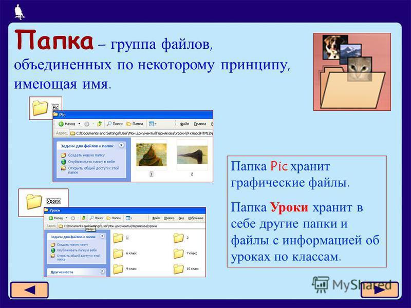 5 из 11 Папка – группа файлов, объединенных по некоторому принципу, имеющая имя. Папка Pic хранит графические файлы. Папка Уроки хранит в себе другие папки и файлы с информацией об уроках по классам.