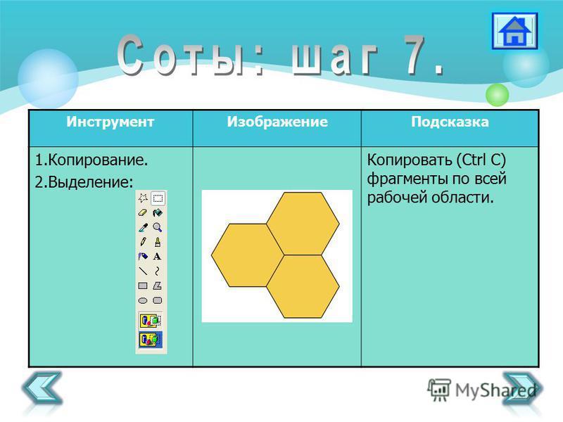 Инструмент ИзображениеПодсказка 1.Копирование. 2.Выделение: Копировать (Ctrl C) фрагменты по всей рабочей области.