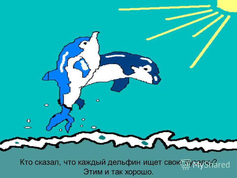 Кто сказал, что каждый дельфин ищет свою русалку? Этим и так хорошо.