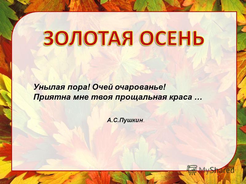 Унылая пора! Очей очарованье! Приятна мне твоя прощальная краса … А.С.Пушкин.