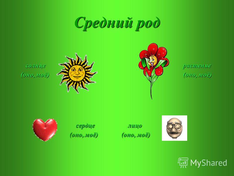 Средний род солнце солнце (оно, моё) (оно, моё) растение растение (оно, моё) (оно, моё) сердце сердце (оно, моё) (оно, моё) лицо лицо (оно, моё)