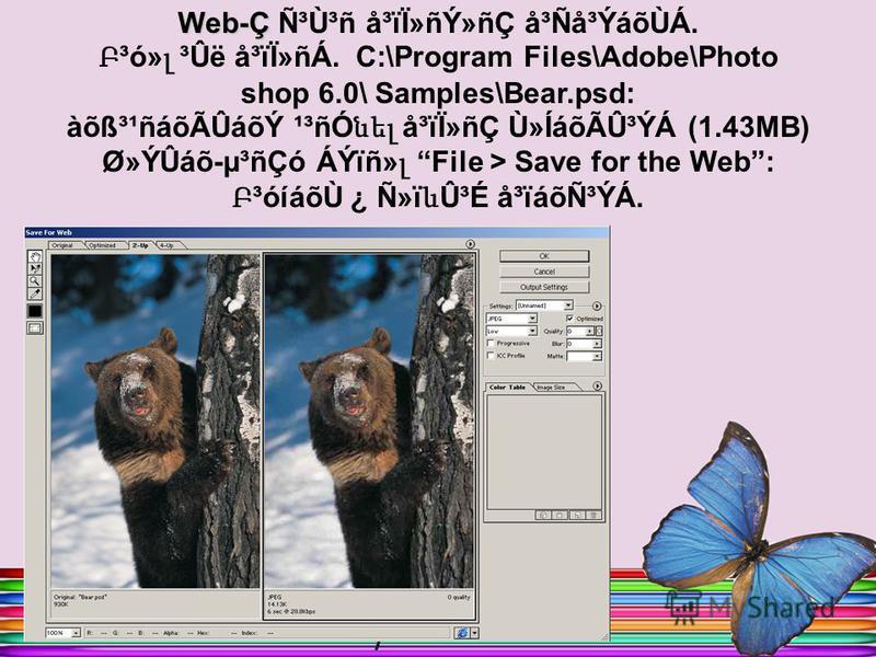 Web-Ç Ñ³Ù³ñ å³ïÏ»ñÝ»ñÇ å³Ñå³ÝáõÙÁ. Բ ³ó» լ ³Ûë å³ïÏ»ñÁ. C:\Program Files\Adobe\Photo shop 6.0\ Samples\Bear.psd: àõß³¹ñáõÃÛáõÝ ¹³ñÓ նել å³ïÏ»ñÇ Ù»ÍáõÃÛ³ÝÁ (1.43MB) Ø»ÝÛáõ-µ³ñÇó ÁÝïñ» լ File > Save for the Web: Բ ³óíáõÙ ¿ Ñ»ï և Û³É å³ïáõѳÝÁ.