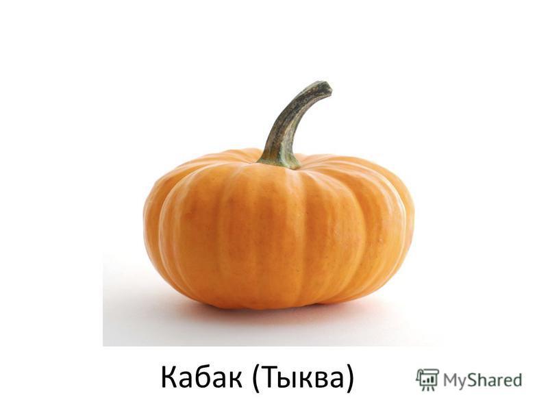Кабак (Тыква)