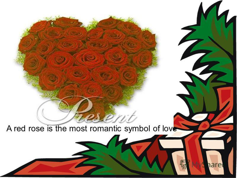 A red rose is the most romantic symbol of love