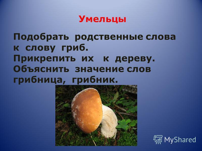 Умельцы Подобрать родственные слова к слову гриб. Прикрепить их к дереву. Объяснить значение слов грибница, грибник.