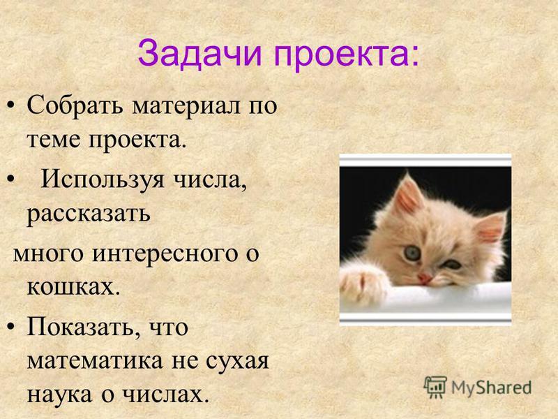 Задачи проекта: Собрать материал по теме проекта. Используя числа, рассказать много интересного о кошках. Показать, что математика не сухая наука о числах.