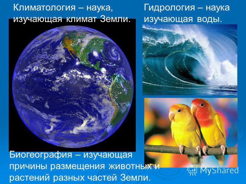 Гидрология – наука изучающая воды. Климатология – наука, изучающая климат Земли. Биогеография – изучающая причины размещения животных и растений разных частей Земли.