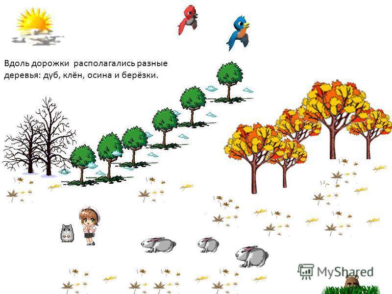 Вдоль дорожки располагались разные деревья: дуб, клён, осина и берёзки.