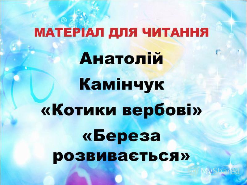 МАТЕРІАЛ ДЛЯ ЧИТАННЯ Анатолій Камінчук «Котики вербові» «Береза розвивається»