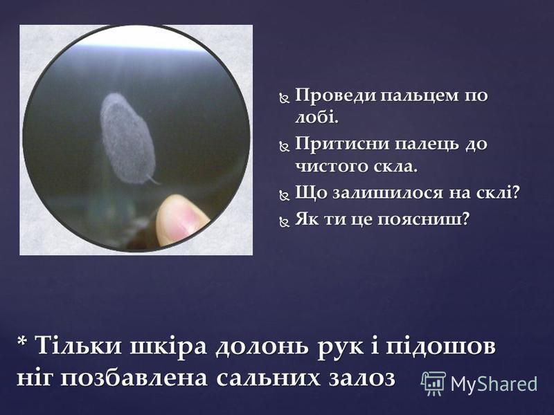 * Тільки шкіра долонь рук і підошов ніг позбавлена сальних залоз Проведи пальцем по лобі. Проведи пальцем по лобі. Притисни палець до чистого скла. Притисни палець до чистого скла. Що залишилося на склі? Що залишилося на склі? Як ти це поясниш? Як ти