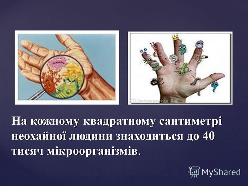 На кожному квадратному сантиметрі неохайної людини знаходиться до 40 тисяч мікроорганізмів.