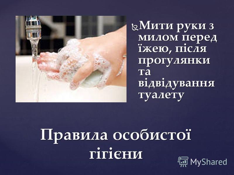 Правила особистої гігієни Мити руки з милом перед їжею, після прогулянки та відвідування туалету Мити руки з милом перед їжею, після прогулянки та відвідування туалету