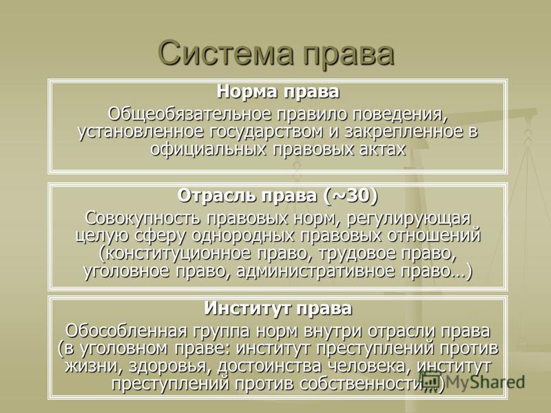 Система права Норма права Общеобязательное правило поведения, установленное государством и закрепленное в официальных правовых актах Отрасль права (~30) Совокупность правовых норм, регулирующая целую сферу однородных правовых отношений (конституционн