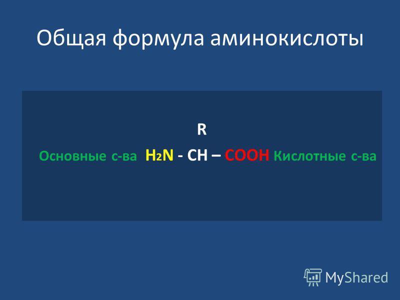 Общая формула аминокислоты R Основные с-ва Н 2 N - СН – СООН Кислотные с-ва