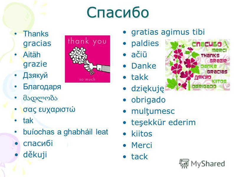 Спасибо Thanks gracias Aitäh grazie Дзякуй Благодаря σας ευχαριστώ tak buíochas a ghabháil leat спасибі děkuji gratias agimus tibi paldies ačiū Danke takk dziękuję obrigado mulţumesc teşekkür ederim kiitos Merci tack