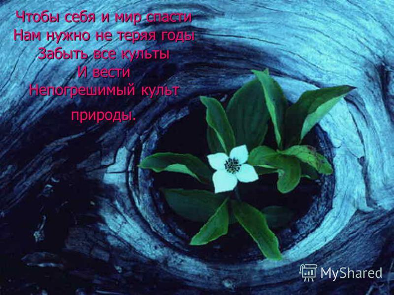 Чтобы себя и мир спасти Нам нужно не теряя годы Забыть все культы И вести Непогрешимый культ природы.