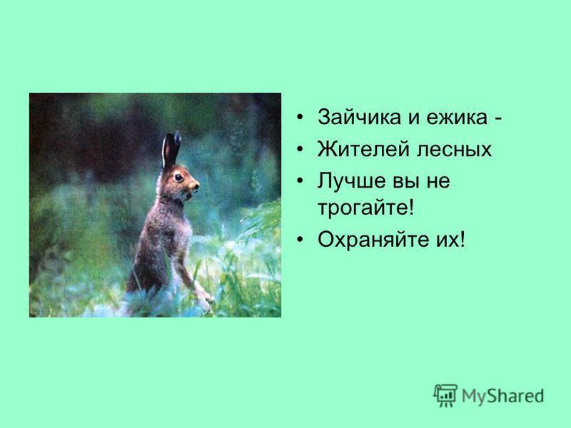 Зайчика и ежика - Жителей лесных Лучше вы не трогайте! Охраняйте их!