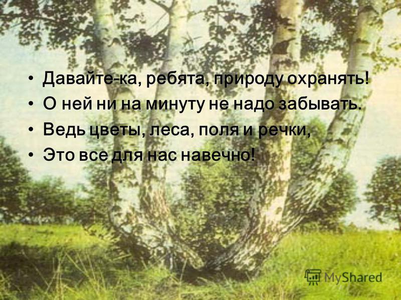Давайте-ка, ребята, природу охранять! О ней ни на минуту не надо забывать. Ведь цветы, леса, поля и речки, Это все для нас навечно!