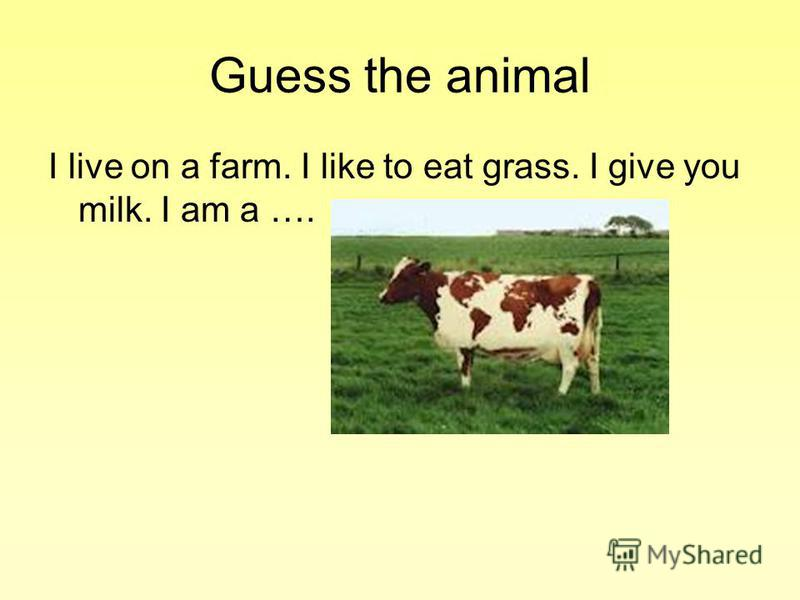 Guess the animal I live on a farm. I like to eat grass. I give you milk. I am a ….
