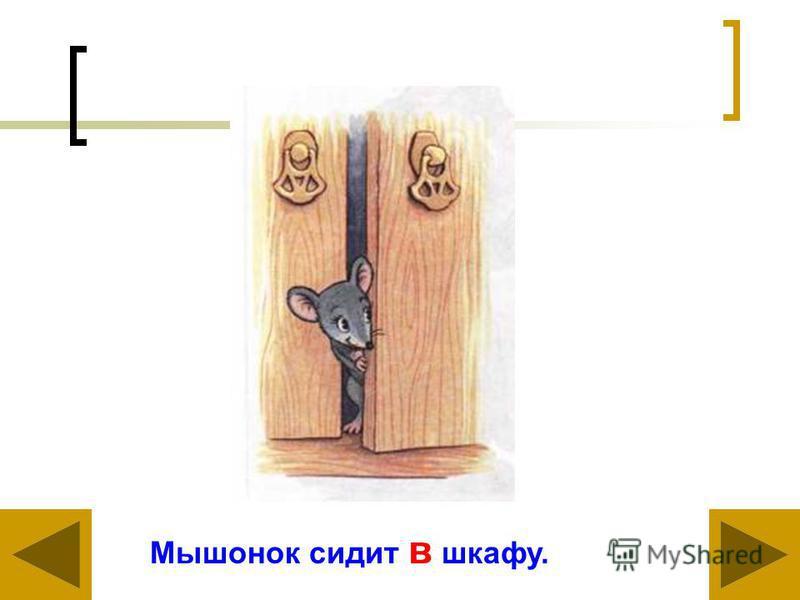 Мышонок сидит в шкафу.