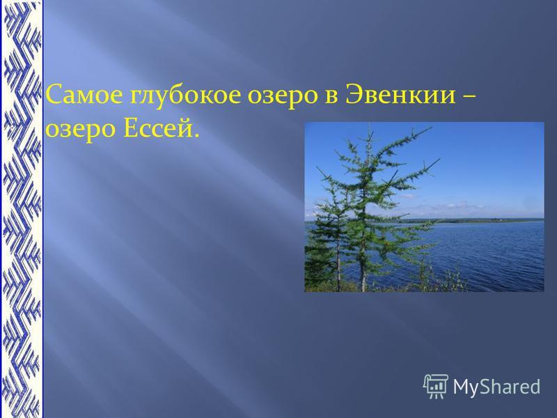 Самое глубокое озеро в Эвенкии – озеро Ессей.